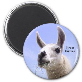 Llama 6 Cm Round Magnet