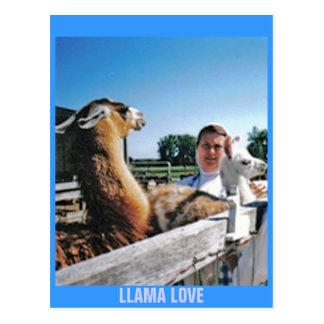 LLAMA LOVE POST CARD