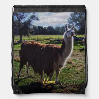 Llama Backpacks