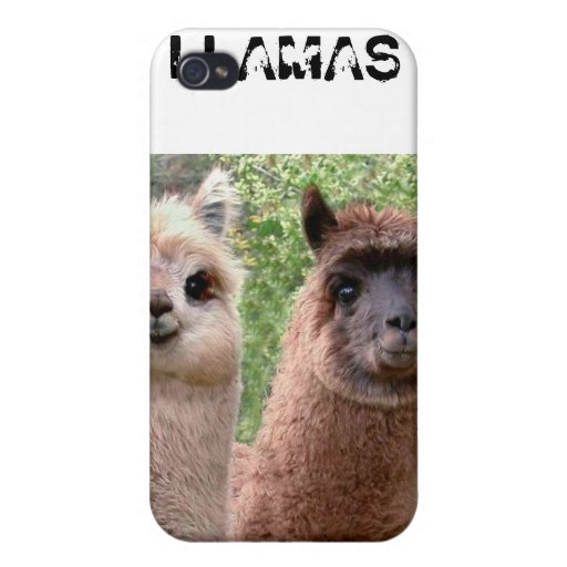Llamas Iphone Case iPhone 4/4S Cover
