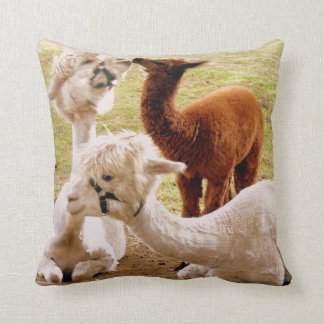 Llamas With Baby Cria Cushion