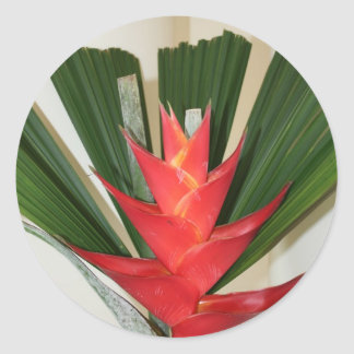 Lobster claw Heliconia flower Sticker