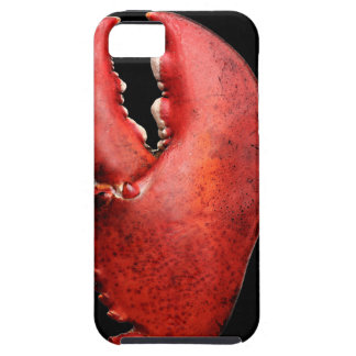 Lobster Claw iPhone 5 Case for Seafood Lovers