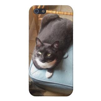 Lola the Tuxedo Cat iPhone 5 Case