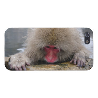 Lonely snow monkey in Nagano, Japan iPhone 5 Cases