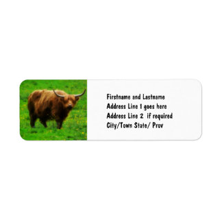 Longhaired LongHorn with Long Horns Return Address Label