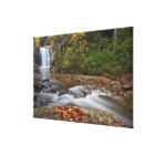Looking Glass Falls in the Pisgah National Canvas Print