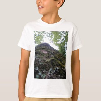 Looking Up the Kauri T-Shirt