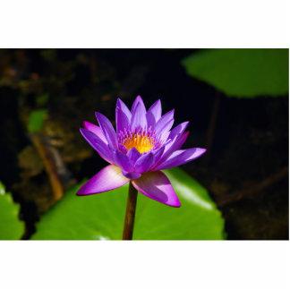 Lotus Flower Standing Photo Sculpture