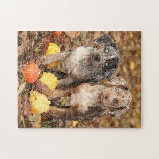 Louisiana Catahoula Puppies With Pumpkins Jigsaw Puzzle