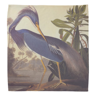 Louisiana Heron Bandana