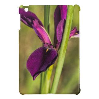 Louisiana Purple Gamecock Iris iPad Mini Case