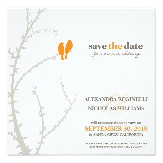 Love Birds Save the Date Announcement (orange)