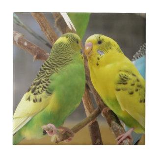 Love Birds Small Square Tile