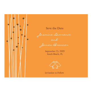 Love Birds with Lines & Dots Orange Postcard