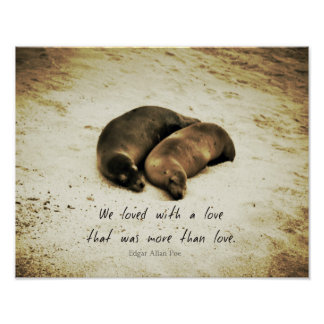 Love couple romantic quote sea lions on the beach poster