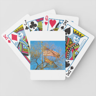 Love of Arizona and the USA Bicycle Playing Cards