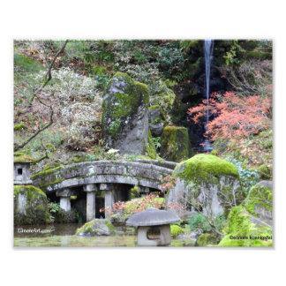 Lovely Japanese Garden with Bridge Photo Art