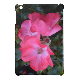 Lovely old, pink English roses. iPad Mini Covers