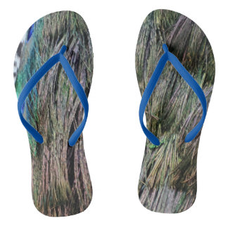 Lovely Peafowl Feathers in Green And Blue Jandals