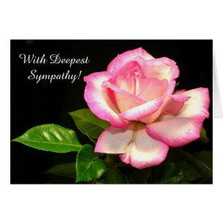 Lovely Pink Rose Sympathy Greeting Card