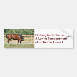Loving Beauty Quarter Horse Bumper Sticker