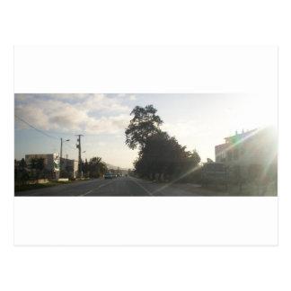 Low Sun Postcard