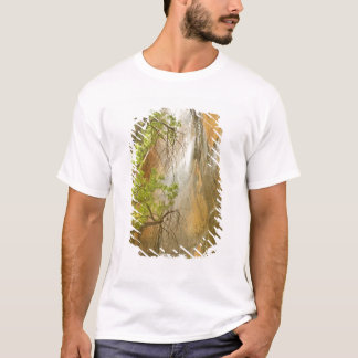 Lower Emerald Pool Waterfall Red rock and Tree T-Shirt