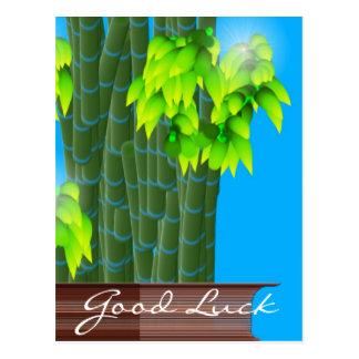 Lucky Bamboo, Good Luck Postcard