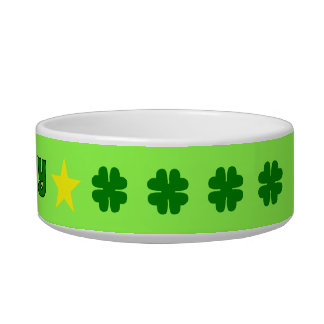 LUCKY green four-leaf clover Pet Water Bowl