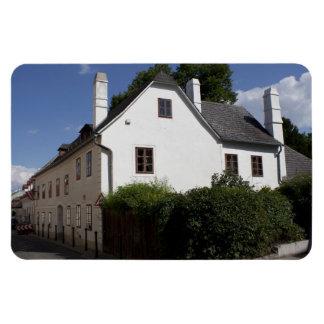 Ludwig van Beethoven House Magnet