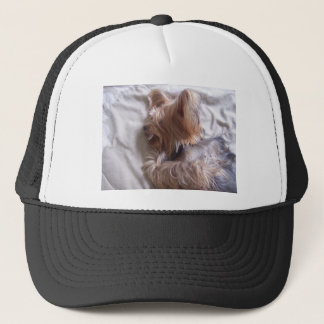 Luke (dog) trucker hat