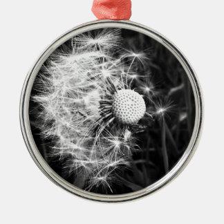 Luke's Photo Silver-Colored Round Decoration