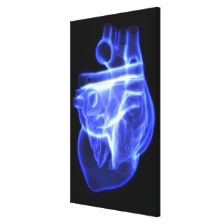 Luminescent view of the human heart canvas print