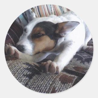Luna Says Get Well Soon Take Naps Classic Round Sticker
