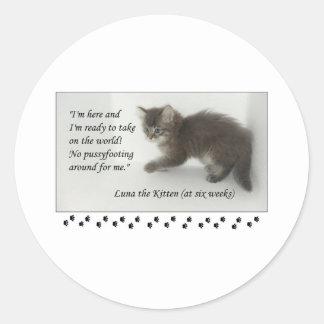 Luna the Kitten Doesn't Pussyfoot Around! Classic Round Sticker