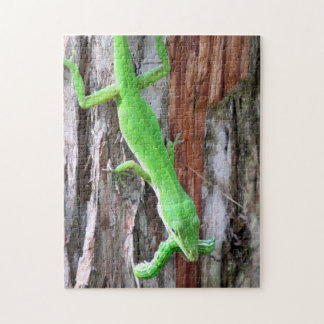 Lunch Anyone?  Green Anole (Lizard) Puzzle