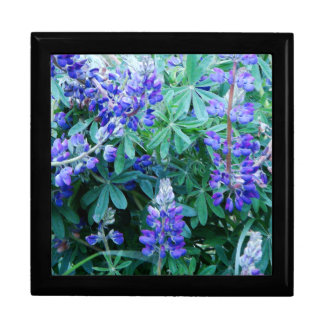 Lupine Flowers Wildflowers Meadow Floral Lupin Gift Box
