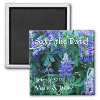 Lupine Flowers Wildflowers Meadow Floral Lupin Magnet