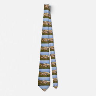 Luskentyre, Isle of Harris, Scotland Tie