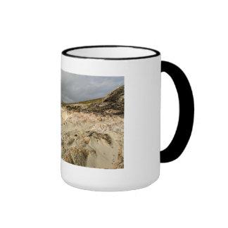Luskentyre Ringer Mug