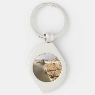 Luskentyre Silver-Colored Swirl Key Ring
