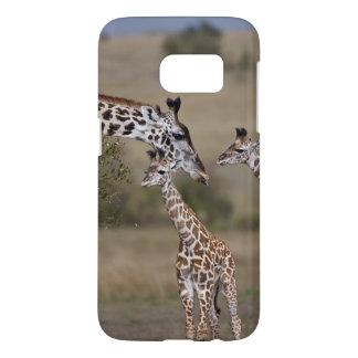 Maasai Giraffe (Giraffe Tippelskirchi)