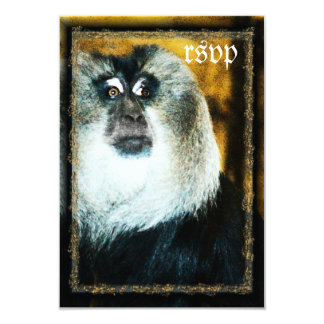 Macaque Monkey Photo Zoo Wedding RSVP Cards 9 Cm X 13 Cm Invitation Card