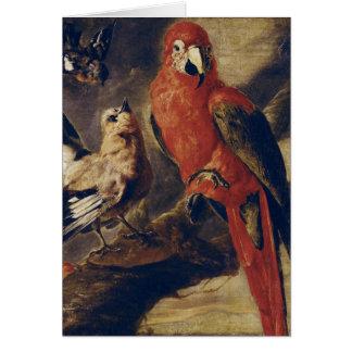 Macaw and Bullfinch Card