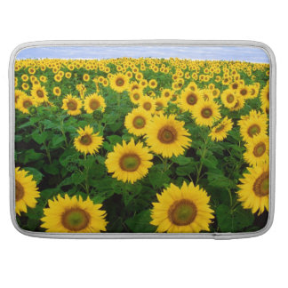 MacBook Pro Case - Sunflowers Sleeve For MacBook Pro