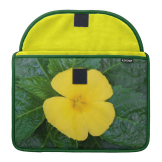 Macbook Pro Sleeve - West Indian Holly