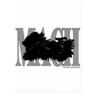 MACH Puli Postcard