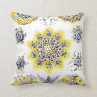 Macro Sea Creatures ~ Amoeba Cushions
