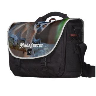 Madagascar Lemur Bags For Laptop